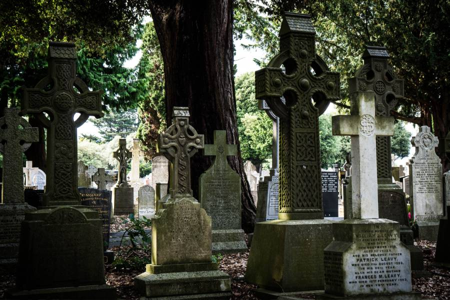 Best Things to do in Dublin - GLASNEVIN CEMETERY